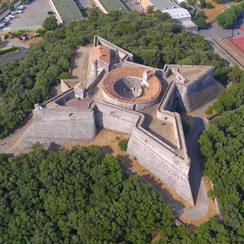 Carre Fort V